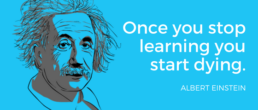 einstein learning