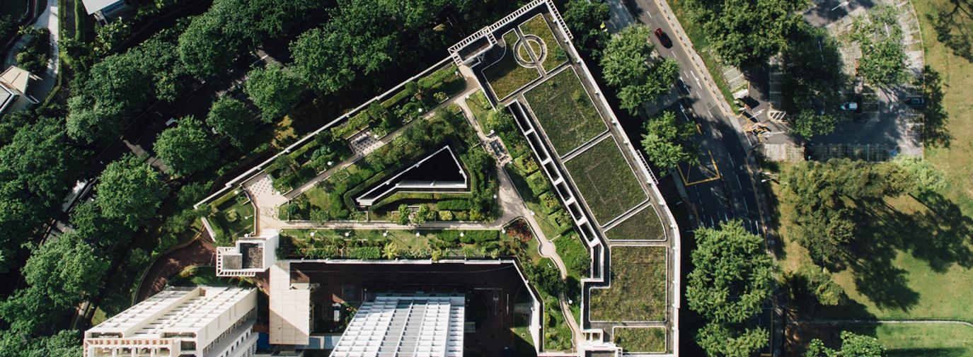 A green roof on an apartment building